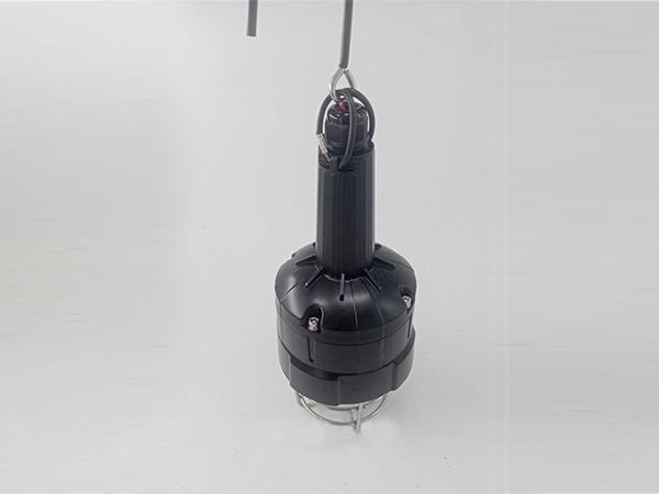 FW6326防爆行灯